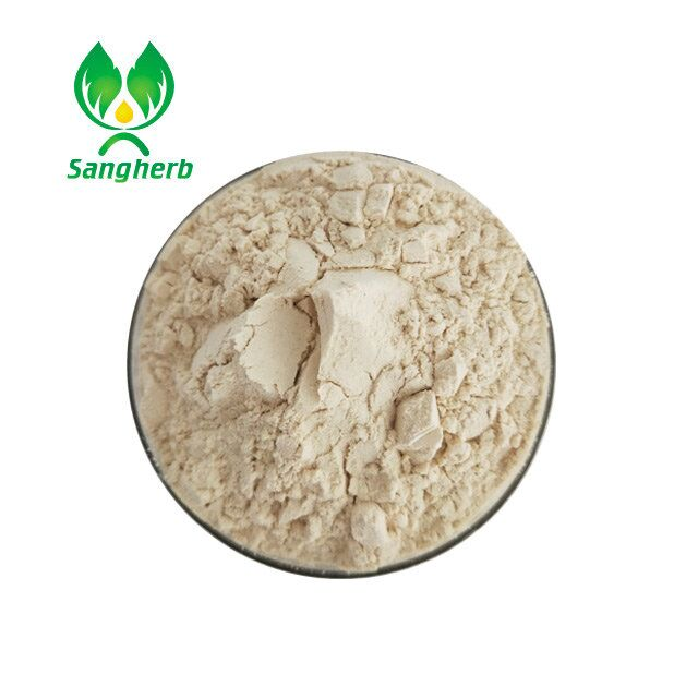 Dehydrated horseradish powder