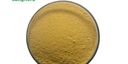 Loquat powder