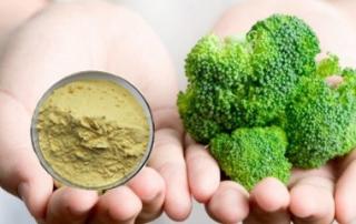 .1 2 3   Broccoli Extract Sulforaphane